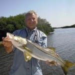 tampa bay fishing charter for snook