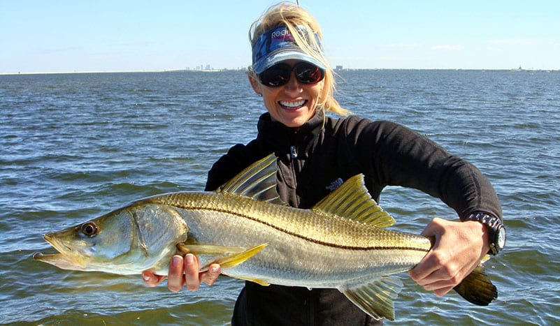 how to catch snook in tampa bay